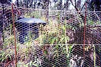 [closer view of rebar-wire-mesh matrix]